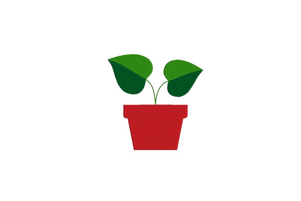- plant 1 - Pflanze im Topf