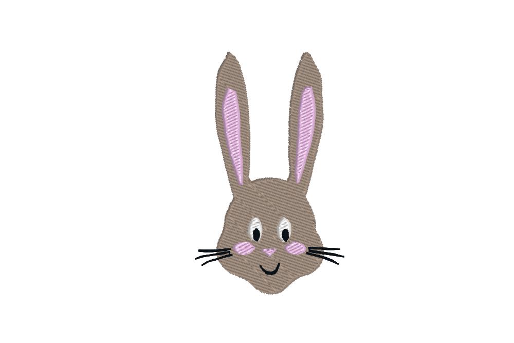 hase - bunny - Hase