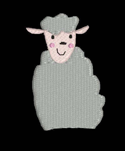 auge - sheep 494x600 - Schaf